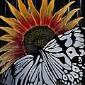 Sunfly by Preethi Mathi