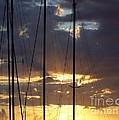 Sunlight - Ile De La Reunion by Francoise Leandre