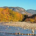 Sunlight On The Saco by Geoffrey Bolte