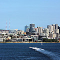 Sunny Seattle by Kristin Elmquist