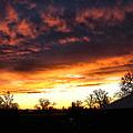 Sunrise 01 05 12 by Joyce Dickens