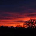 Sunrise 01 10 12 by Joyce Dickens