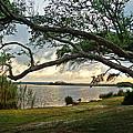 Sunrise Across The Lagoon by Michael Thomas