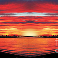 Sunrise by Anne Ferguson