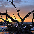 Sunrise At Driftwood Beach 5.2 by Bruce Gourley