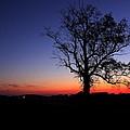 Sunrise At Little Elk Creek Road by Ruthie Lombardi