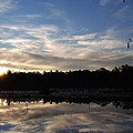Sunrise At The Pond by Charlie Day