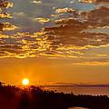Sunrise Bayou by Joan McCool
