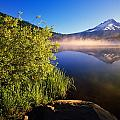 Sunrise Fog On Trillium Lake by Natural Selection Craig Tuttle