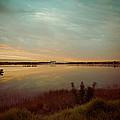 Sunrise In Orlando by Trish Tritz