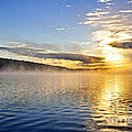 Sunrise On Foggy Lake by Elena Elisseeva
