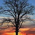 Sunrise On The Farm by Jerry Hellinga