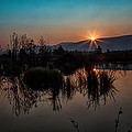 Sunrise Over The Beaver Pond by Ronald Lutz