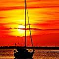 Sunrise Sailing by Nick Zelinsky