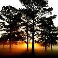 Sunrise3 by Amber Stubbs