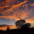 Sunset 07 26 12 by Joyce Dickens