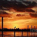Sunset 1-1-12 by Lynda Dawson-Youngclaus