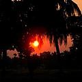 Sunset 4 by Johnson Moya
