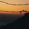 Sunset And Barbed Wire At Big Sur by Christina Weber