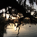 Sunset At Blue Springs by Rick Lesquier