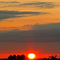 Sunset At The Farm by Debbie Portwood