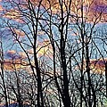 Sunset Cloud Colors 5 by Dave Dresser