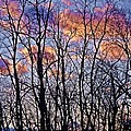 Sunset Cloud Colors 9 by Dave Dresser