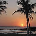 Sunset by David Gleeson