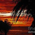 Sunset In Cancun by Rebecca Morgan