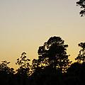 Sunset Landscape by Robert Valentine
