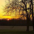 Sunset Near The Jersey Shore by Ann Murphy
