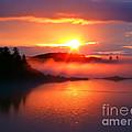 Sunset On Campobello Island  by Edward Fielding