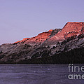 Sunset On Frozen Tenaya Lake by Jim And Emily Bush