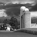 Sunset On The Farm Bw by David Dehner