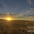 Sunset On The Prairie by Jim And Emily Bush