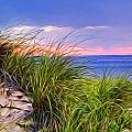 Sunset On Wellfleet Dunes by Tammy Wetzel