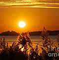Sunset On White Lake by Cheryl Butler