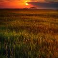 Sunset Over Field by Jill Battaglia