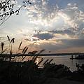 Sunset Over The Potomac by Lisa Spencer Osterhoudt