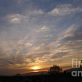 Sunset Over The San Fernando Valley by Nina Prommer