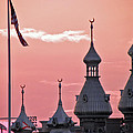 Sunset Over The University Of Tampa by Diane Barrett