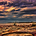 Sunset Rocks by Douglas Barnard