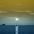 Sunset Sails by Bill Cannon