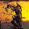 Sunset Splash 3 by Bill Lindsay