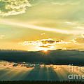 Sunset Sunbeams by Debbie Portwood