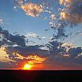Sunset Supreem by Debbie Portwood