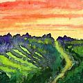 Sunset Vineyard by James Leonard