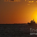 Sunset With Fishing Boat At Sea by Andre Babiak