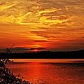 Sunset Xxiv by Joe Faherty