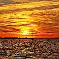 Sunset Xxxi by Joe Faherty